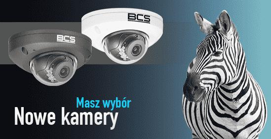 masz wybór - nowe kamery